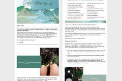 Vidya... Newsletter (copy+design)